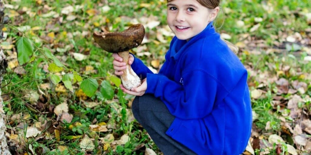 Who Can Go for Forage Walks