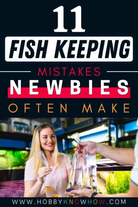 fish keeping mistakes
