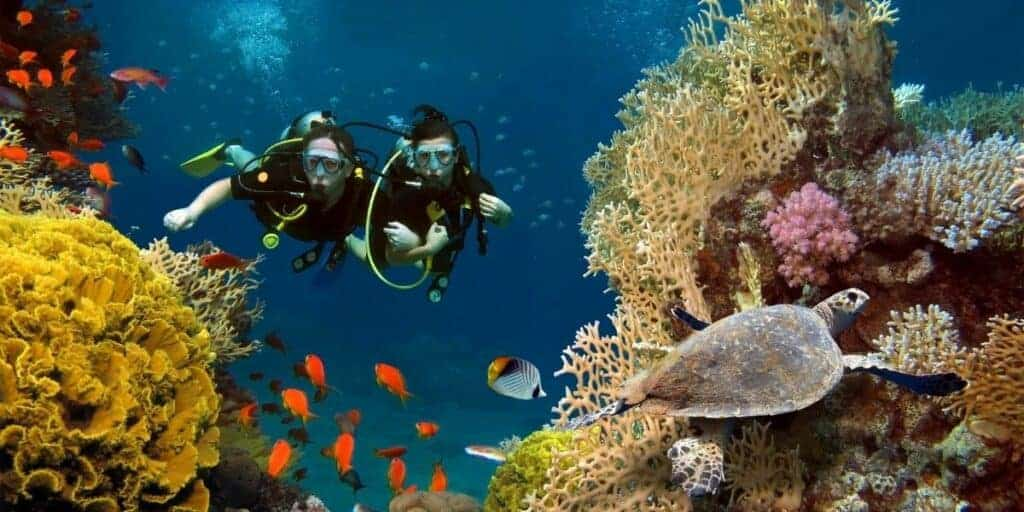 scuba diving hobby