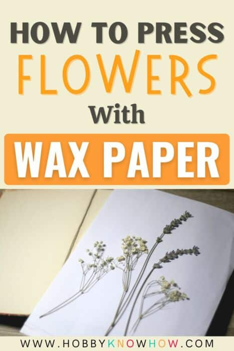 press flowers with wax paper